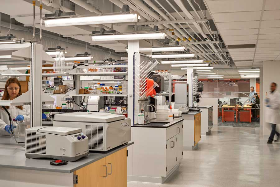 design build services firm for lab central