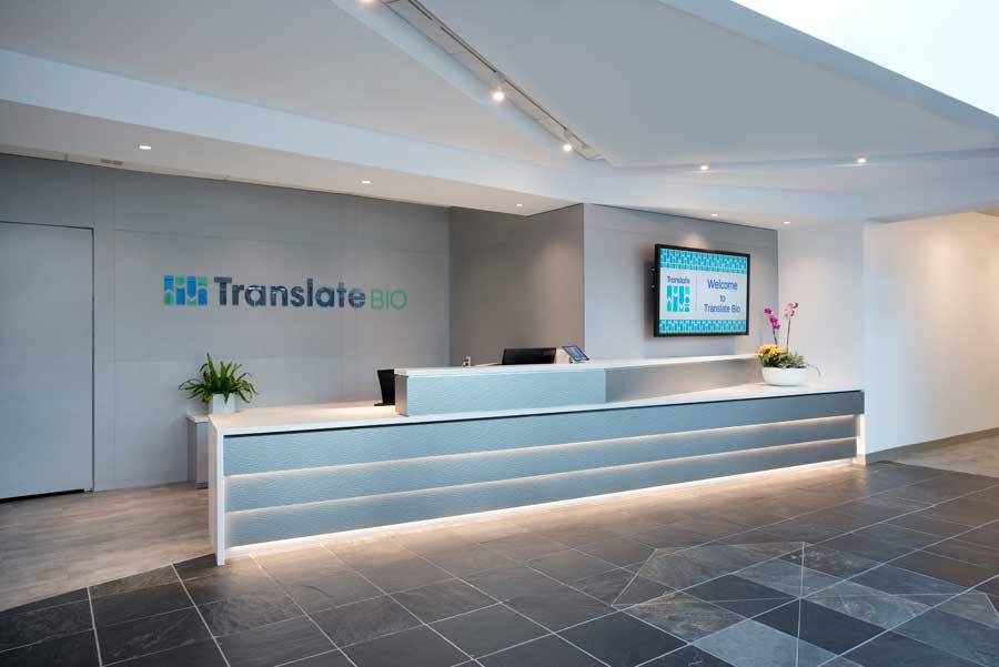 design build services firm for translate